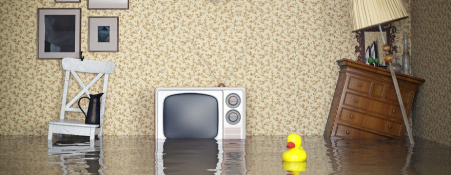 What Water Does to Your Carpets